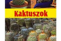 cacti, agave