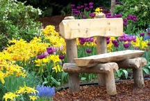 Garden Furniture / by Adele MacNeill