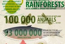 RN - Nature & Green Infographics