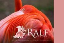 RN - Image :  Ralf Nature / This are some of our advertisements
