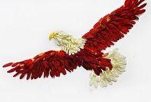 Teach-Eagles