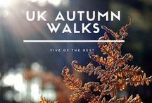 Colours Of Autumn / Images from autumn