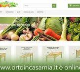 ORTOincasamia.it / Sito Web di e-commerce Come organizzare facilmente un orto sul terrazzo o balcone di casa.