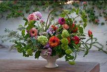 Blooming Art / by Stems Flower Shop Dore Huss