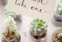 Escort Card Table Ideas / by Stems Flower Shop Dore Huss