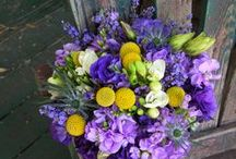 Purple flowers and Bouquets