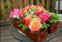 Centerpieces / by Stems Flower Shop Dore Huss
