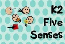 K 2 Five Senses / Five senses activities and units
