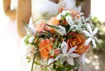 Coral Bouquets / Coral flower bouquets / by Stems Flower Shop Dore Huss