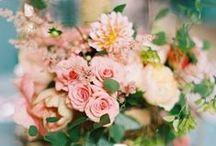 Floral / Pretty flowers and floral arrangements.