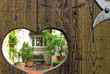log house heirloom gardens / by Jackie B