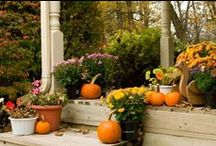 FALL DECORATING / My favorite time of year (until Christmas, and then all bets are off! lol) I love all things orange.