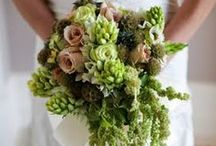 Succulent Bouquets / Succulents for wedding bouquets and centerpieces / by Stems Flower Shop Dore Huss