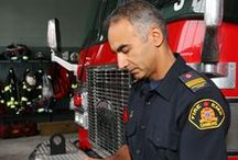 Public Sector - Fire  / Fire Department Interests / by Aladtec