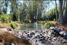 DWG - Sub Divisions / Landscape architect Christchurch, landscape design Christchurch, landscape architecture, landscape subdivision design, landscape design