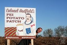 Col. Hadfield's Spud Odyssey / Colonel Chris Hadfield harvesting his Potato Patch during a special PEI farm visit!