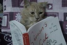 Read for love, Read for life