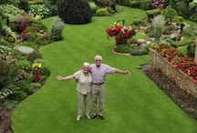 Dreamy Gardens / Gardens which dreams are made of!