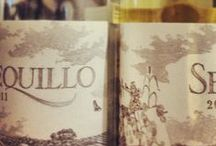 wine of the week / every week, a wine we love at hangingditch