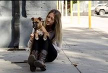 girlsbestfriend / women fashion with dogs