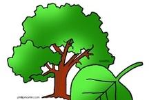 Thema bos kleuters / Forest theme preschool / Thema bos kleuters / Forest theme preschool