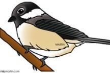 Thema vogels kleuters / Theme birds preschool / Thema vogels kleuters / Theme birds preschool