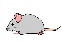 Thema muizen kleuters / Mouse theme preschool / Thema muizen kleuters, lessen en knutselen / Mouse theme preschool, lessons and crafts