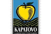Kapatovo, Gardens & Vineyards / Brand identity for an agrocompany