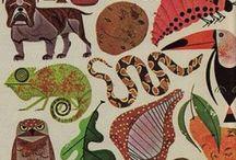 Biyoloji / Evrim kuramı.