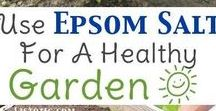 Garden - Fertiliser /Pesticides/Composters
