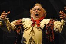FALSTAFF / Festival Verdi 2013