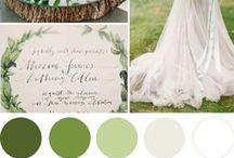 :: Color Pallettes ::