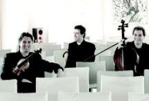 MUSICA DA CAMERA 2014 / Informazioni e date su teatroregioparma.it