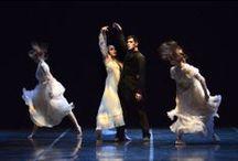 COMPAGNIA JUNIOR BALLETTO DI TOSCANA - GISELLE / ParmaDanza 2014 Info su teatroregioparma.it