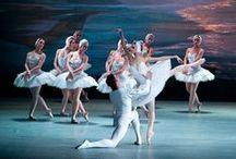 Balletto dell'Opera di Kiev - Il lago dei cigni / ParmaDanza 2015, Info: http://www.teatroregioparma.it/Pagine/Default.aspx?idPagina=31