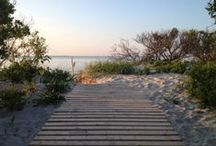 Why Martha's Vineyard? / Images from around this beautiful place we call home.