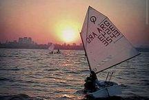 Optimist Sailing Fun