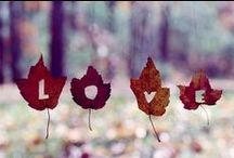 O amor é meu lema. De alma leve e coração aberto *** / O mundo é meu, seu e de todos os que amam profundamente.
