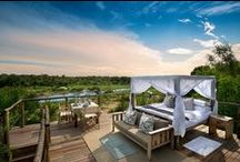 Greater Kruger National Park / Game reserves, lodges, wildlife and safaris in the magnificent Kruger National Park