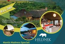 East Cape Tours Specials / Special deals that we are currently offering