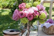 gardening & flowers