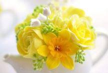 Floristika / Květinové aranže a dekorace
