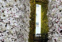 Vertical Gardens / Feel free to invite