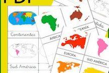 Els continents
