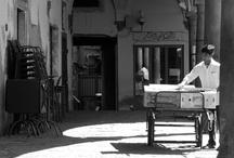 Pisa Street Scenes