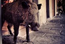 #Tuscany Style