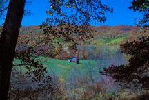Tazewell County, Virginia / by Sandy Cornwell