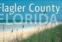 Flagler County Business Connections / If you plan to move to #Florida and start a business, it's important to know your options and who can help you. Here's a small list of places who can and will help.
