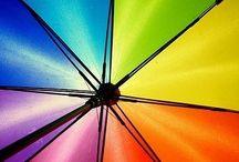Colors / All favorite colors