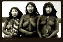 Pueblos originarios / Etnias de la tierra